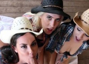 3 Damsel Cowgirls share a successful..